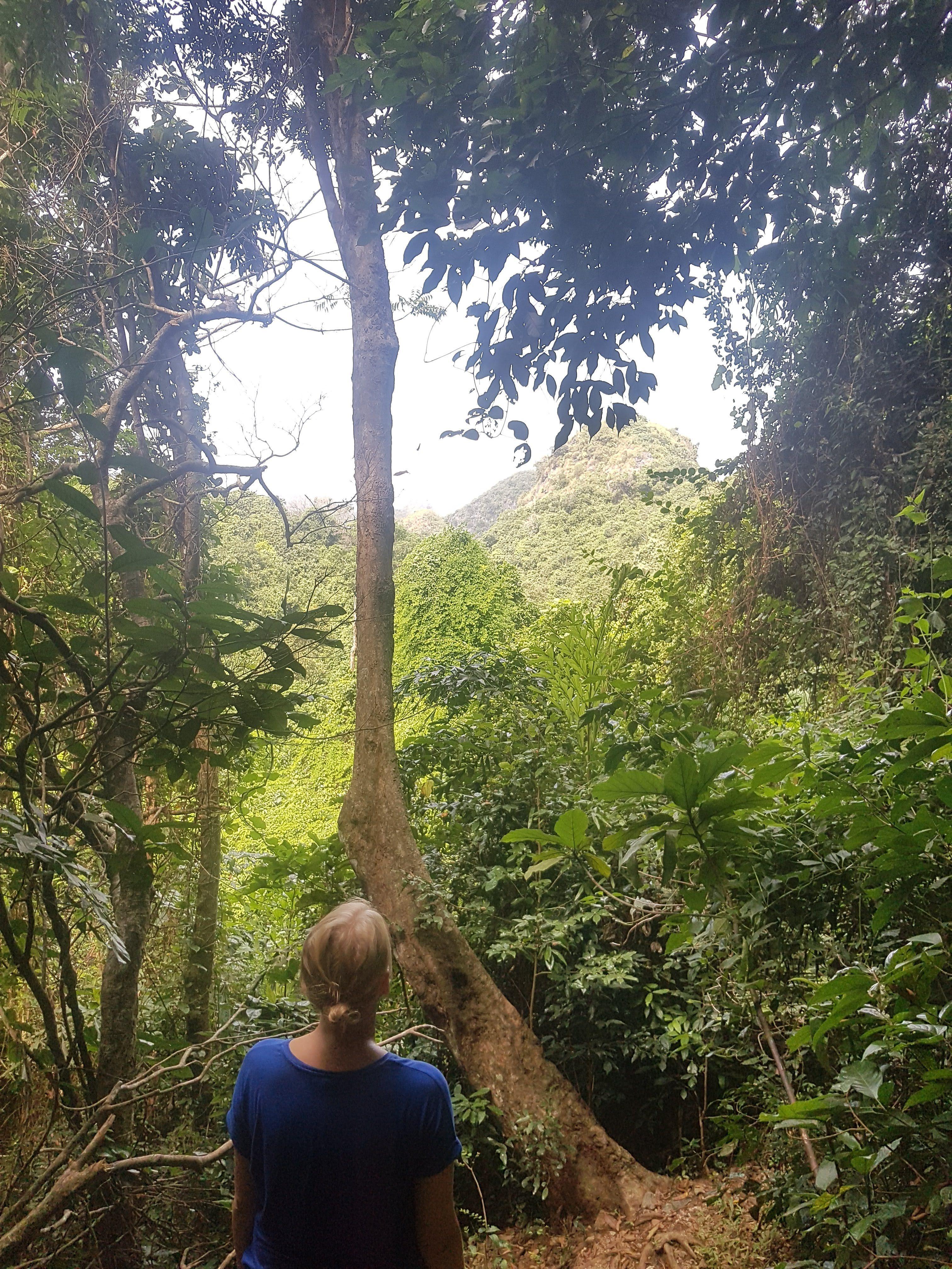 Hike ved Cat Ba National park