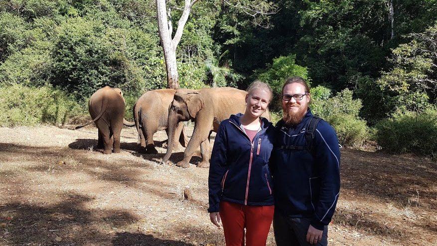 Elefantspotting og næste destination(er)!