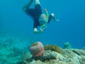 Rejsebudget på Maldiverne!